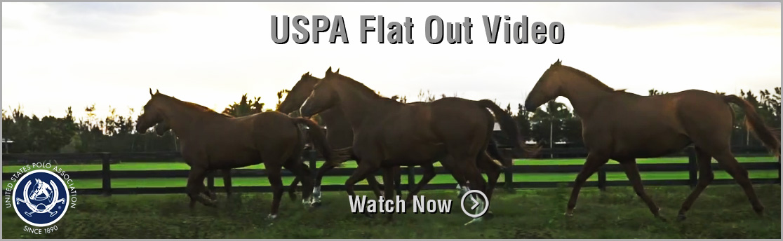 USPA Flat Out Video